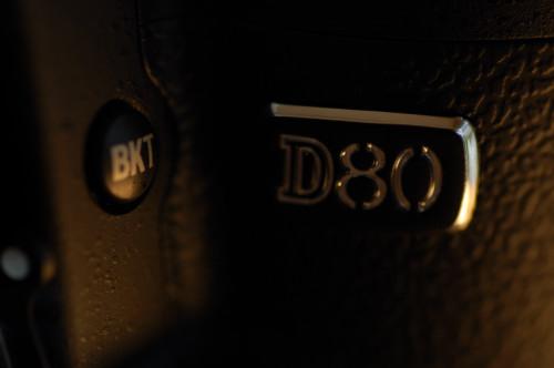 DSC_3530b.jpg